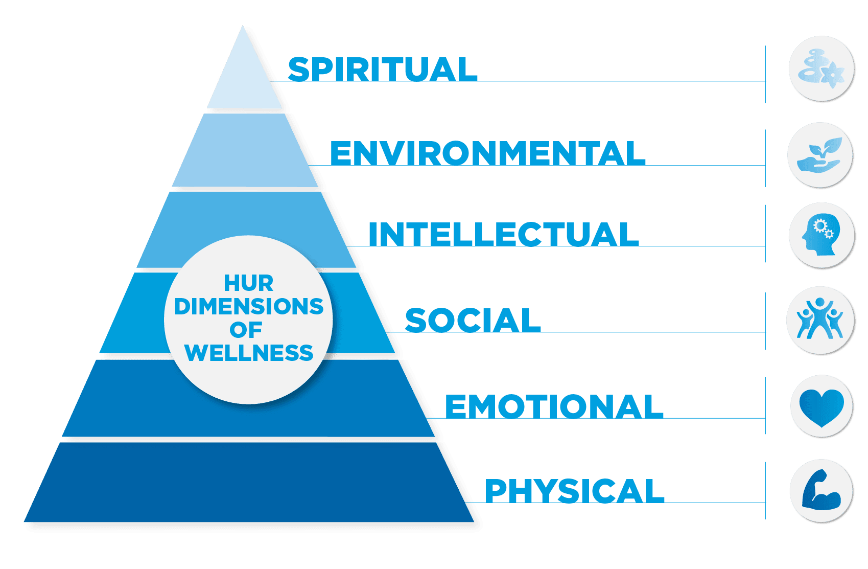 The Six Dimensions Of Wellness | El Paso Texas Chiropractor