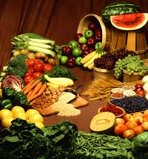 Micronutrients and Health | El Paso Texas Chiropractor