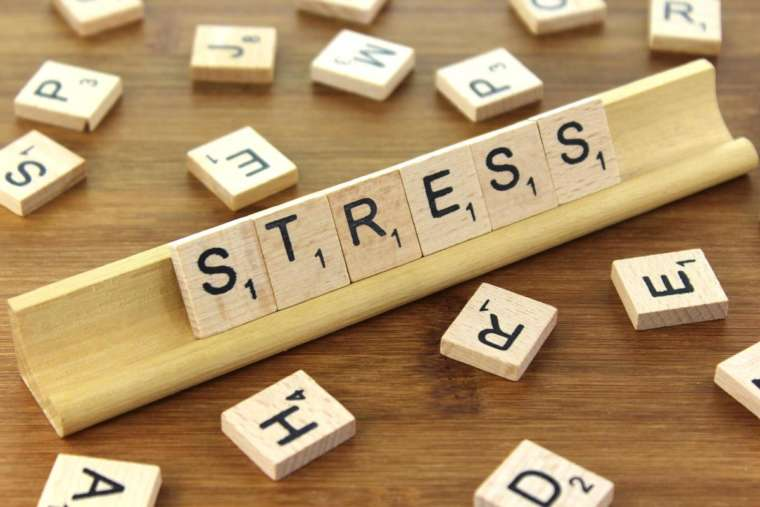 Epigenetics: Stress In Relation To Chronic Disease | El Paso Health