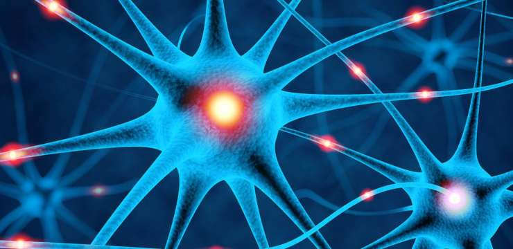 Mitochondrial Dysfunction & The Nervous System | El Paso Health Coach