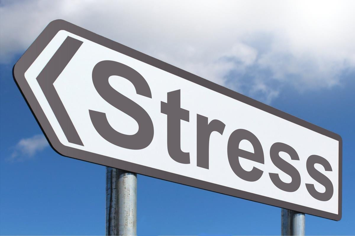 Stress: How Stress Leads To Burnout & Inflammation | El Paso Health Coach