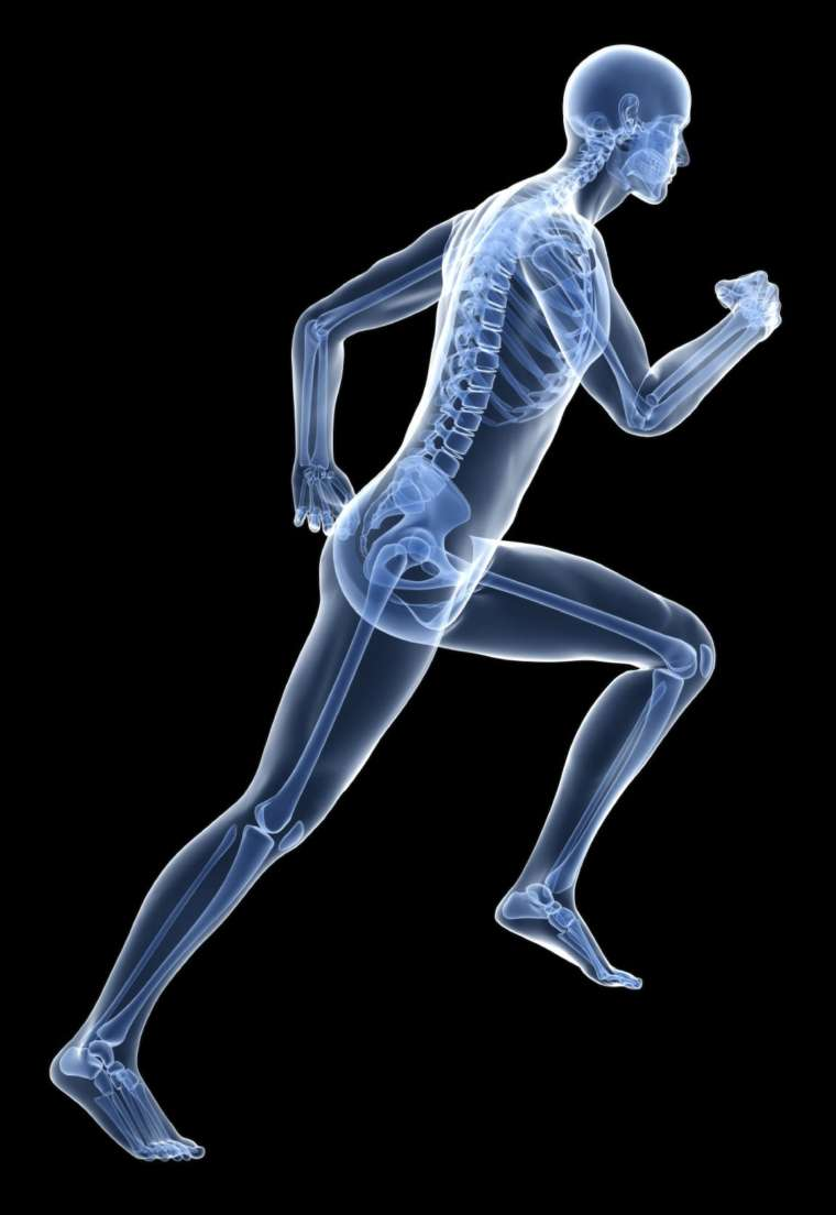 Health and Wellness: Bone Health | El Paso Texas Chiropractor and Health Coach