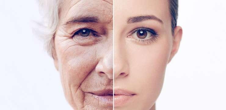 Can You Change Your Epigenetic Clock? | El Paso, TX Chiropractor