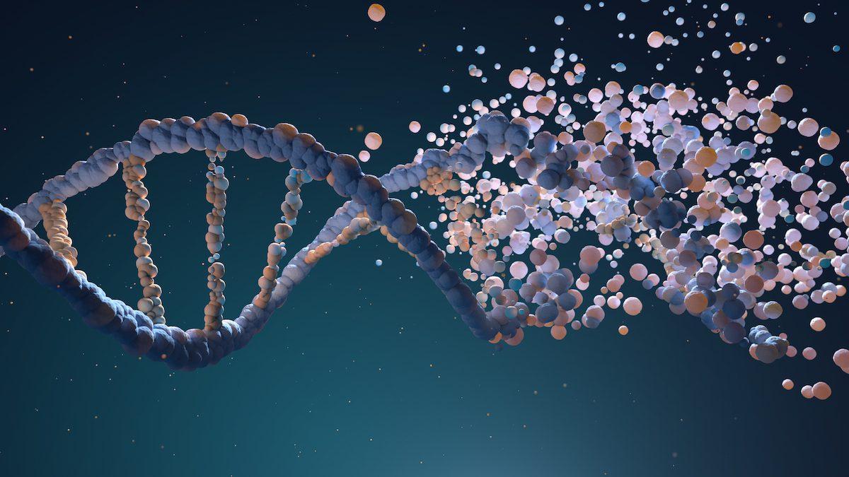 CKD genetics